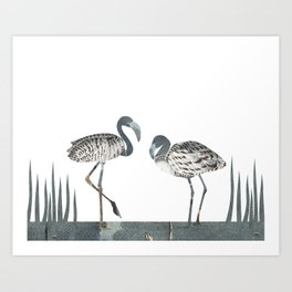 Flamingos in Silvery Blue Art Print
