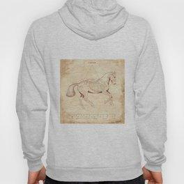 Da Vinci Horse: Canter Hoody
