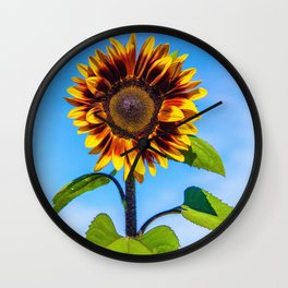 Sunflower Standing Tall by Reay of Light Wall Clock