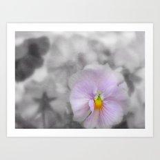 Lilac soft Focus Pansy Art Print