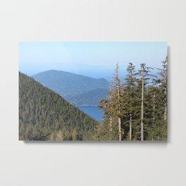 St. Mark's Summit Mount Cypress 3 Metal Print