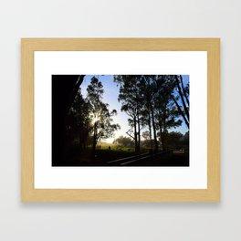sunset trees Framed Art Print