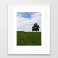 cows Framed Art Prints featuring Cows by Natalie Reed