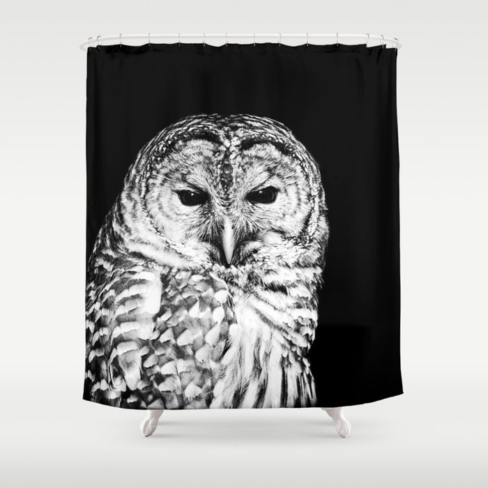 Black And White Barred Owl Face Close Up Shower Curtain By