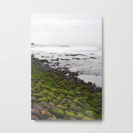Green Rock on the Shore Metal Print