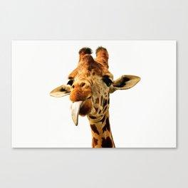 Fanny giraffe Canvas Print