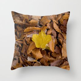 be different!  Throw Pillow