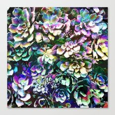 Colorful Abstract Plants Canvas Print
