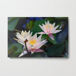Water Lily neighbours and friends Metal Print