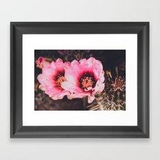 Faded Desert Blooms Framed Art Print