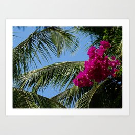 African Palm Flowers Art Print