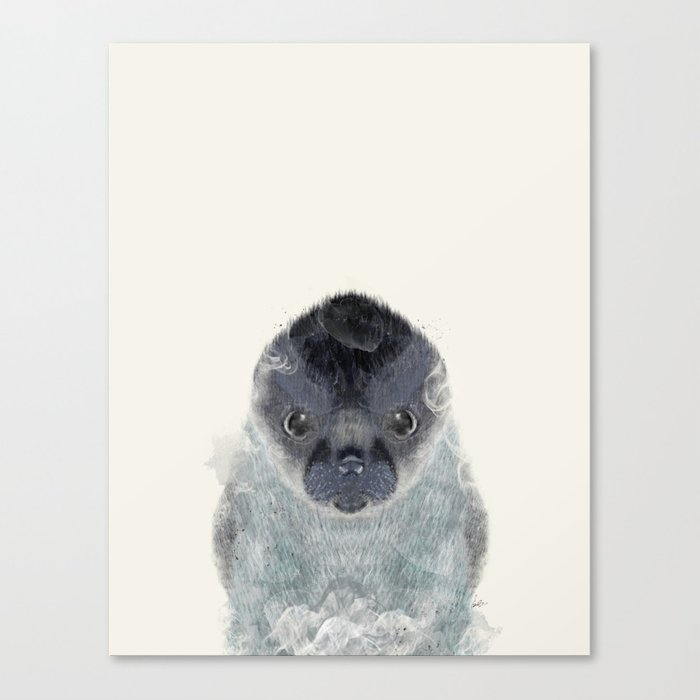 little seal Canvas Print