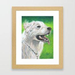 A Dog's Love Never Dies Framed Art Print