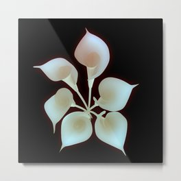 Lilies from above Metal Print