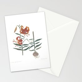 tiger lily with root Stationery Cards