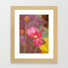 The last Poppys 1 Framed Art Print