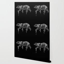 Polar Wallpaper