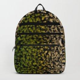 Windy Backpack