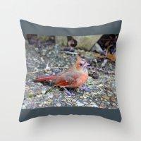 cardinal Throw Pillows featuring Cardinal by MyLove4Art