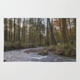 Winter along the Brook Rug