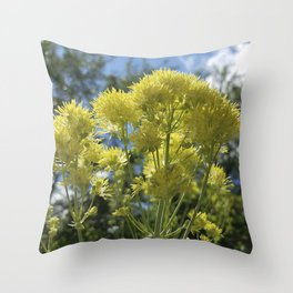 Glowing yellow meadow-rue, Thalictrum flavum Throw Pillow