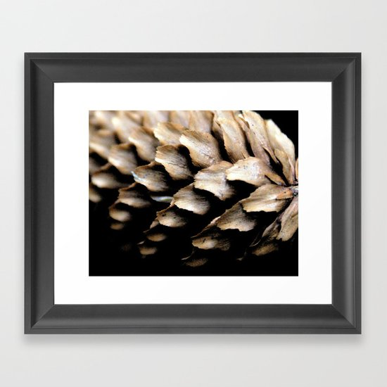 Fir Cone macro Framed Art Print
