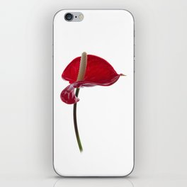 Anthurium - 2 iPhone Skin