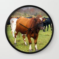 cows Wall Clocks featuring Cows by AstridJN