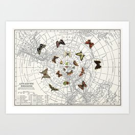 The Buttefly Effect - Antarctic Edition Art Print