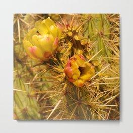 Cacti in Bloom Metal Print