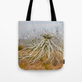 Cape Hatteras Lighthouse thru the Trees Tote Bag