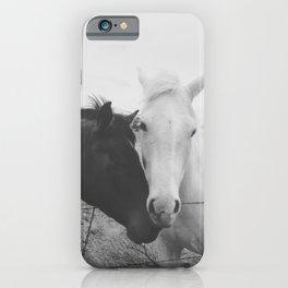 Horse Pair iPhone Case