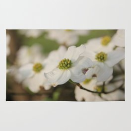 Dogwood Blossoms Rug