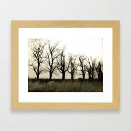 Easter Trees Framed Art Print
