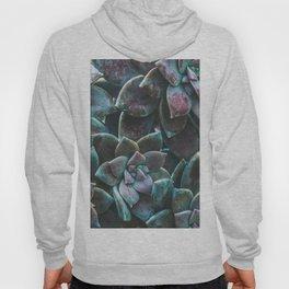Botanical Gardens II - Succulents #321 Hoody
