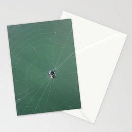 In the spider's net Stationery Cards