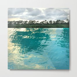 seascape 002: lacy trees and palm isles pool Metal Print