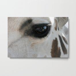 Giraffe Lashes Metal Print