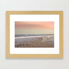 Pink Sandy Beaches Framed Art Print
