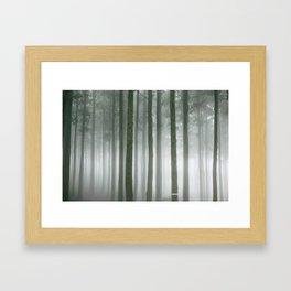 Forest Walk Framed Art Print