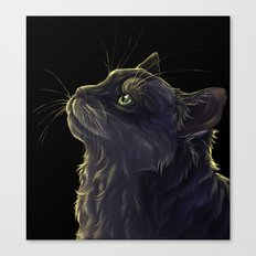 Cat and the light  Canvas Print