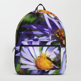 Pollen Dusted Bee on Asters Backpack