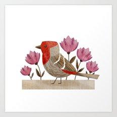 House Finch Art Print