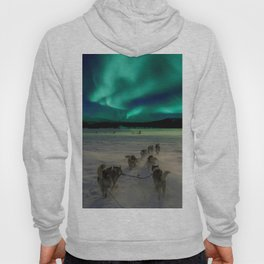 Winter Northern Lights Dog Sled (Color) Hoody