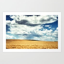 Find Your Stillness Art Print