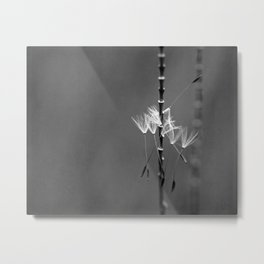 tiny acrobats Metal Print
