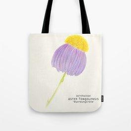 Botanical Sketches 3: East Indies Aster Tote Bag