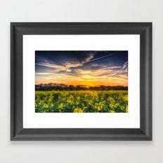 April Afternoon Field Framed Art Print