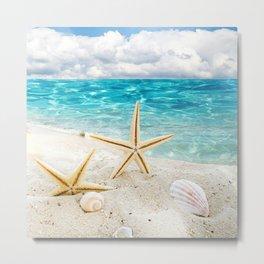 seashell and sea Metal Print