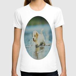 Splish - Splash, puddles are fun T-shirt